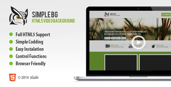 Simple BG - Easy Video Background - CodeCanyon Item for Sale