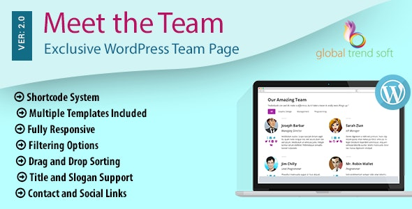 Meet the Team - Exclusive WordPress Team Page - CodeCanyon Item for Sale