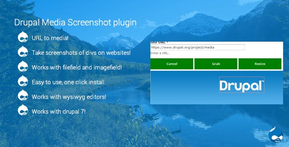 Drupal Media screenshot plugin