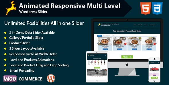 Animated Responsive Multi Level WordPress Slider