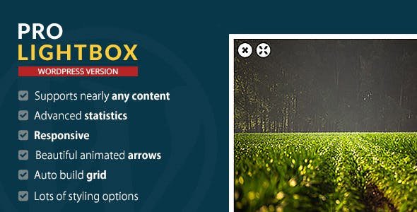 WordPress Pro Lightbox plugin