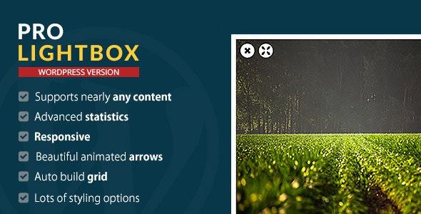 WordPress Pro Lightbox plugin - CodeCanyon Item for Sale