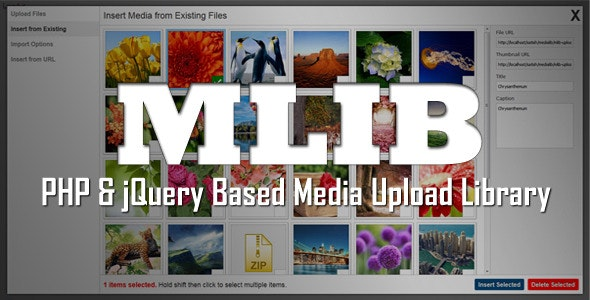 mLIB - PHP & jQuery based media upload library - CodeCanyon Item for Sale