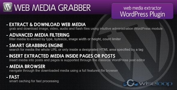 Web Media Grabber WordPress Plugin  - CodeCanyon Item for Sale