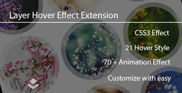 Layer - Ihover Extension