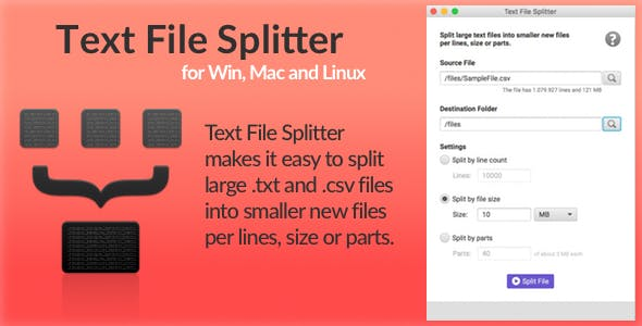 Text File Splitter