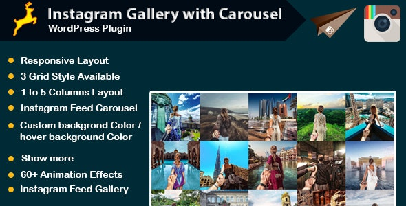 Instagram Gallery with Carousel for WordPress - CodeCanyon Item for Sale