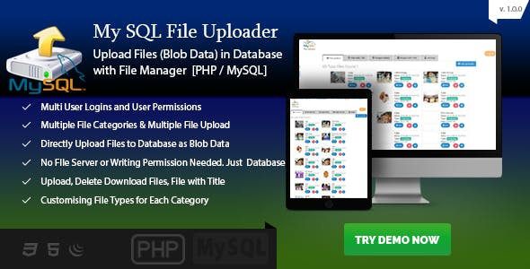 MySQL Blob Uploader - File Upload to Database PHP - Blob File Server