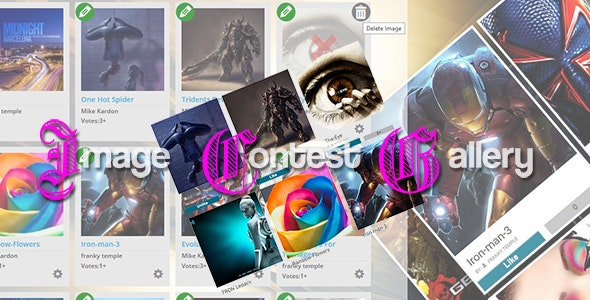 Image Contest Gallery System - CodeCanyon Item for Sale