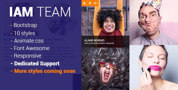 IAM Team – Responsive Team Feature Layout