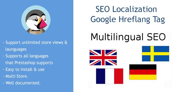 SEO Google Hreflang Tag and Canonical URL Tag