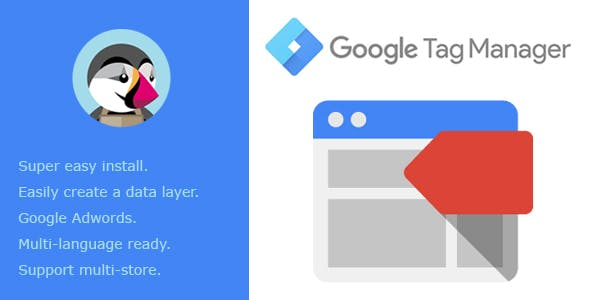 Google Tag Manager Integration