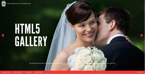 HTML5 Fullscreen Gallery - CodeCanyon Item for Sale