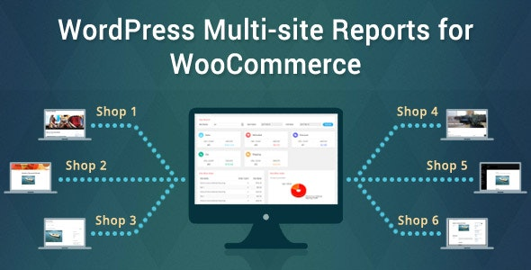 WordPress Multi-site Reports - CodeCanyon Item for Sale