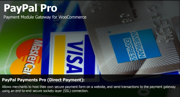 PayPal Pro Payment Module for WooCommerce - CodeCanyon Item for Sale