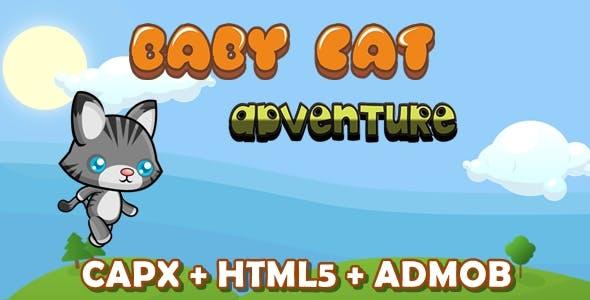 Baby Cat Adventure