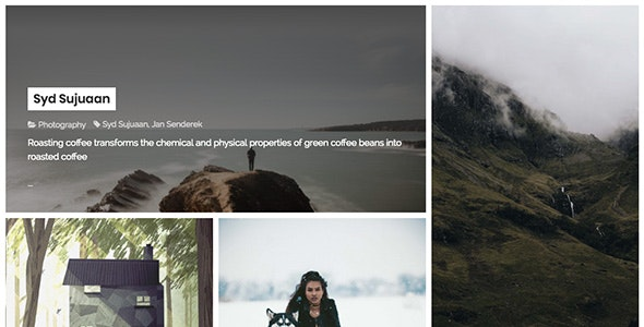 Selena - TZ Portfolio+ Gallery