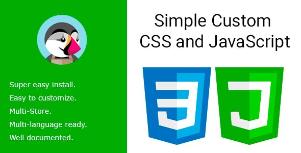 Simple Custom CSS and JavaScript