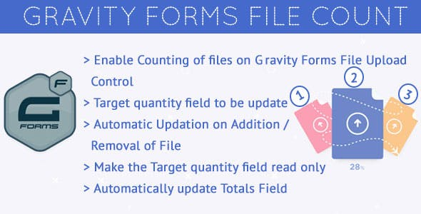 Gravity Forms Count Files