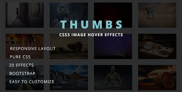 THUMBS - Image Hover Effects