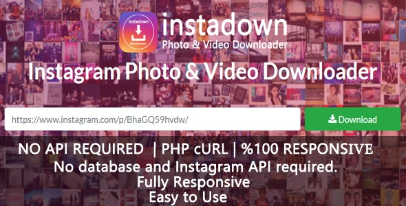 InstaDown - Instagram Photo & Video Downloader - CodeCanyon Item for Sale