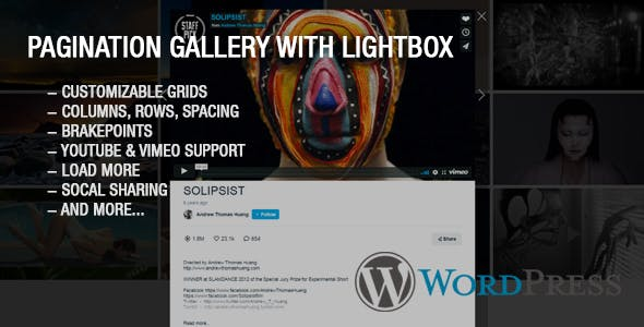 Ultimate Youtube and Vimeo Gallery Wordpress Plugin