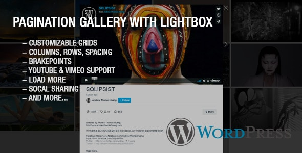 Ultimate Youtube and Vimeo Gallery Wordpress Plugin - CodeCanyon Item for Sale