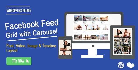 Facebook Feed : Post, Photo,Video and Timeline for WordPress - CodeCanyon Item for Sale