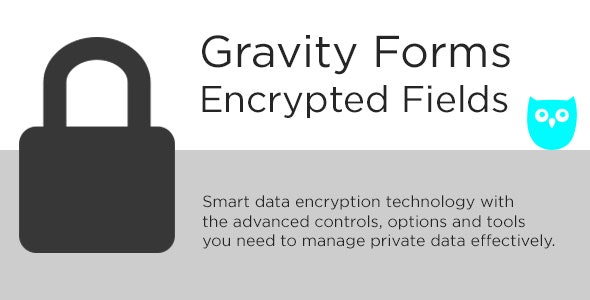 Gravity Forms Encrypted Fields by PluginOwl | CodeCanyon