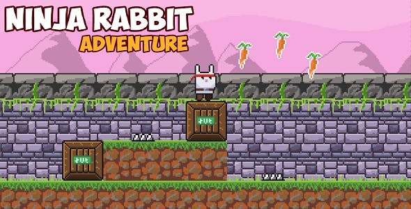 Ninja Rabbit Adventure