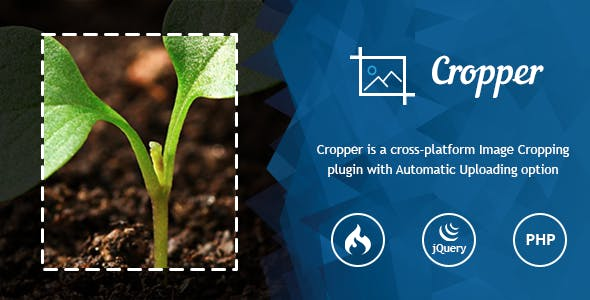 Ultra Image Cropper – Plugin built on PHP (CorePHP and CodeIgniter) Script