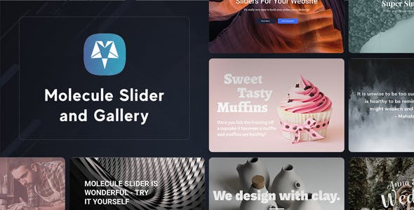 Molecule Slider and Gallery Responsive WordPress Plugin
