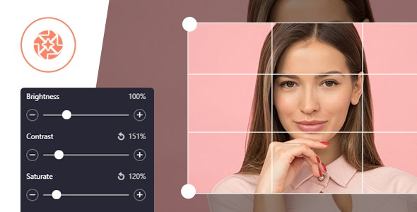 ProVision Image Editor for WordPress / WooCommerce with Folders File Manager - CodeCanyon Item for Sale