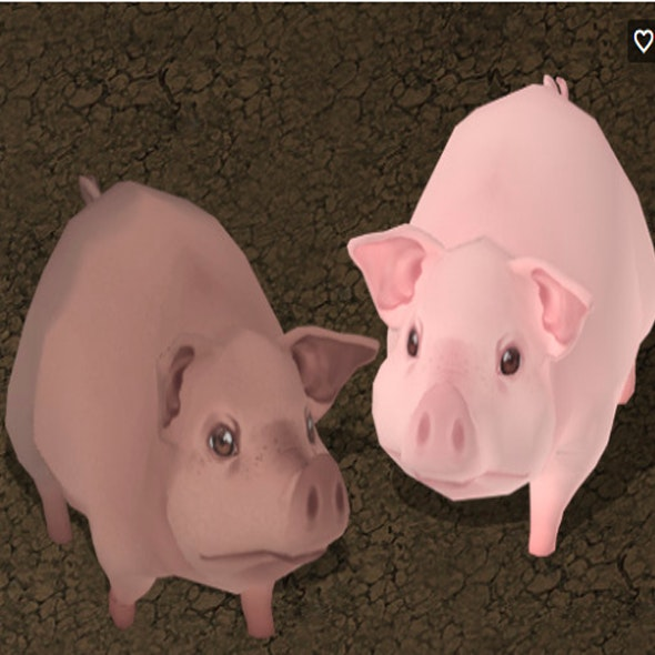 Hand Painted Pig - CodeCanyon Item for Sale