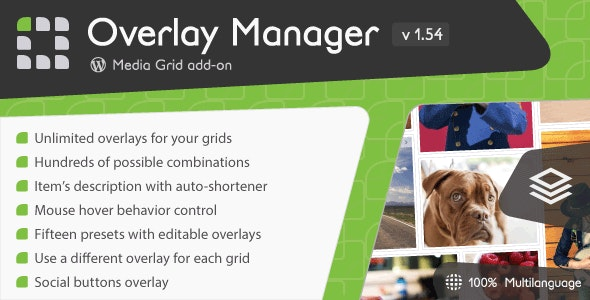 Media Grid - Overlay Manager add-on by LCweb | CodeCanyon