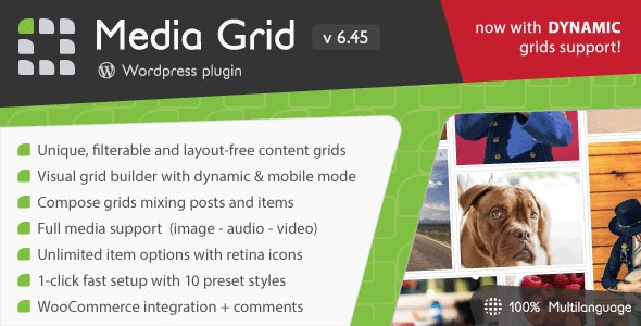 Wordpress Grid Gallery Plugin by Lcweb