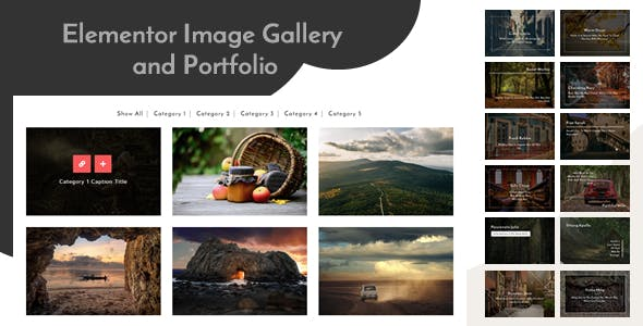 Elementor Image Gallery and Portfolio