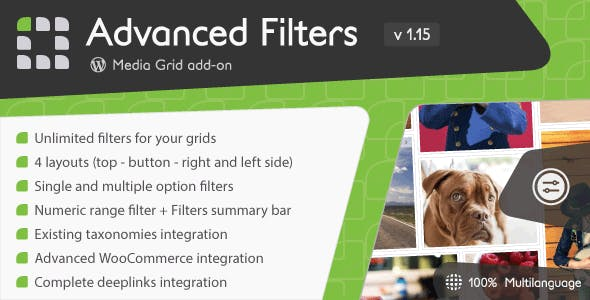 Media Grid - Advanced Filters add-on