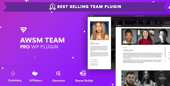 The Team Pro - Team Showcase WordPress Plugin - CodeCanyon Item for Sale