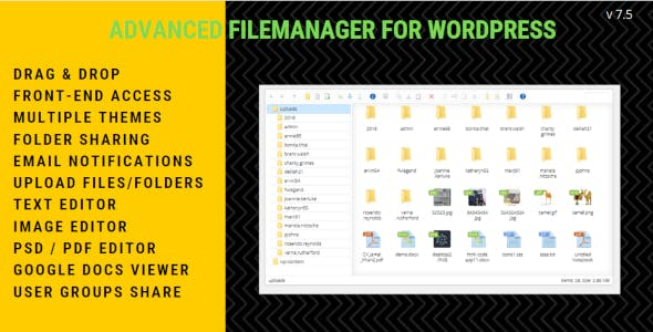 File Manager Plugin For WordPress