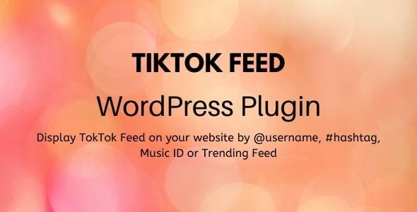 TikTok Feed - WordPress Plugin - CodeCanyon Item for Sale