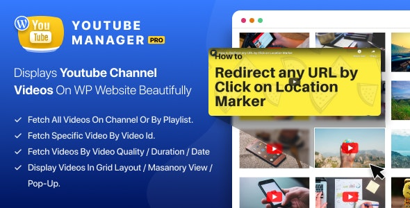 WP YouTube Manager Pro - CodeCanyon Item for Sale