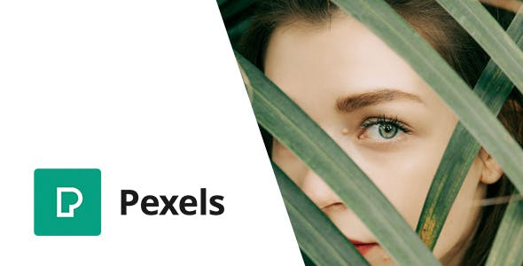 Pexels - Import Free Stock Images into WordPress