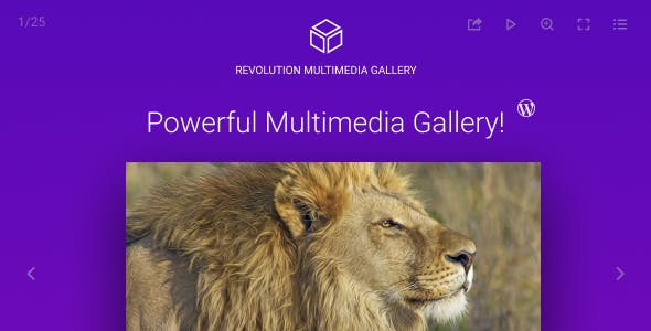 Revolution Multimedia Gallery Wordpress Plugin