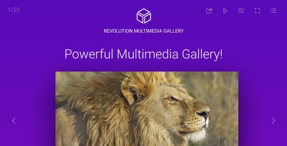 Revolution Multimedia Gallery