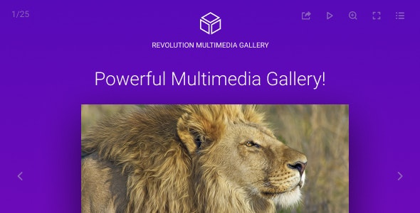 Revolution Multimedia Gallery - CodeCanyon Item for Sale