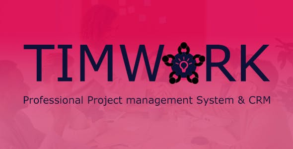 TimWork - Project Management System