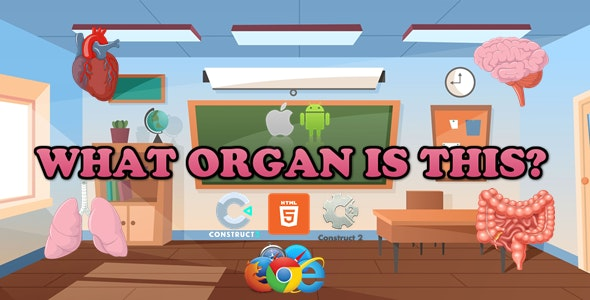 What Organ Is This? - Educational Game - HTML5 (Capx/C3p) - CodeCanyon Item for Sale