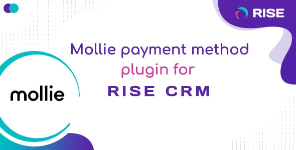 Mollie payment method for RISE CRM