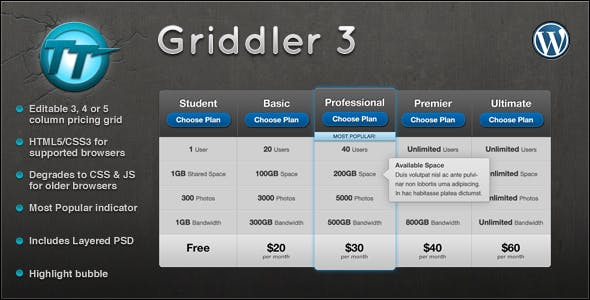 Griddler Pricing Grid 3